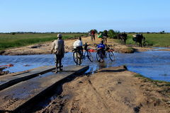 Rural living - villagers pushing their bicycles across flooded road Stock Images