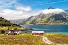 Rural Lofoten during summer in Norway Royalty Free Stock Image