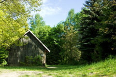 Rural log-house in forest Stock Image