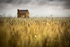 Rural Love Stock Photography