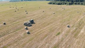 One tractor works on a field, top view. Rural machine collects haystacks on a farmland stock footage