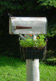 Rural Mailbox with Flower Box Stock Photography
