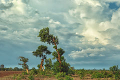 Rural Malawi Royalty Free Stock Photo