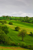 Rural marche countryside Royalty Free Stock Images