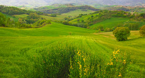 Rural marche landscape Stock Photo