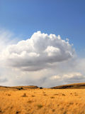 Rural meadow with storm clouds Stock Photos