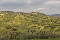 Rural mediterranean landscape with vineyards and Smartno village, Slovenia Royalty Free Stock Photos