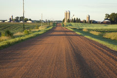 Rural Minnesota road with farms in morning light. Rural Minnesota dirt road with farms in morning light Royalty Free Stock Image