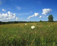 Rural Missouri pastoral scene. Grazing land along highway 94 in rural Missouri Stock Photo