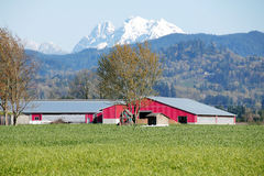 Rural Mountain Farm Land Stock Photo