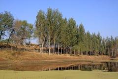 Rural natural scenery Stock Photo