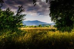 Rural Nature Landscape Stock Photos