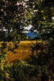 Rural Nature Landscape Royalty Free Stock Images