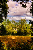 Rural Nature Landscape Stock Photo