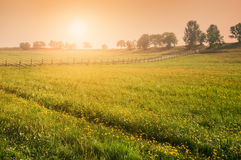 Rural nature at sunset Royalty Free Stock Images
