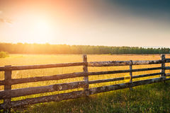 Rural nature at sunset Stock Photo