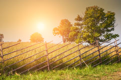 Rural nature at sunset Stock Photos