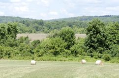 Rural New Jersey Royalty Free Stock Photography