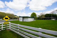 Rural New Zealand. Gravel farm track amongst rolling hills, Coromandel Peninsular, New Zealand Royalty Free Stock Photo