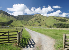 Rural New Zealand. Gravel farm track amongst rolling hills, Coromandel Peninsular, New Zealand Stock Images