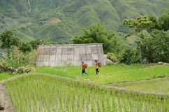 Rural North Vietnam Stock Photos