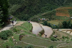 Rural North Vietnam Stock Image