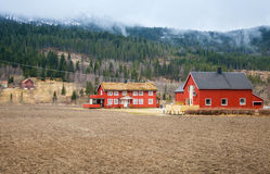 Rural Norwegian landscape with red wooden houses. And foggy forest on hills Stock Images