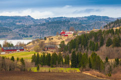 Rural Norwegian landscape with red wooden houses Royalty Free Stock Photography