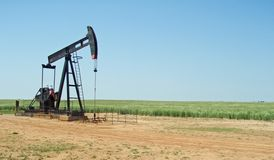 Rural Oil Rig and Wheat Field. A rural oil pump in the midst of a wheat field Royalty Free Stock Photography