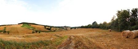 Rural panorama Stock Photos