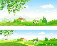 Rural panorama countryside background