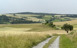 Rural panoramic scenery with farm track Stock Image