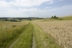 Rural panoramic scenery with field path Stock Photos