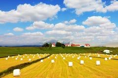 Rural pastoral Stock Photo
