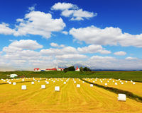 Rural pastoral after harvesting Royalty Free Stock Photo