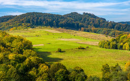 Rural pasture fields on Carpathian hills Stock Photography