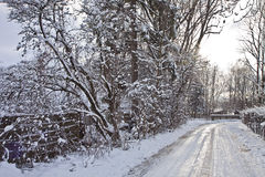 Rural path in Bavarian countryside covered by snow Stock Photo