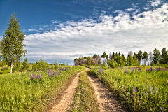 Rural path through field and forest. Russia Stock Photography