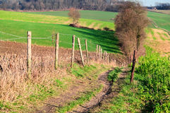 Rural path through the fields Royalty Free Stock Image