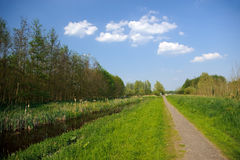 Rural path next to river and forest Royalty Free Stock Image