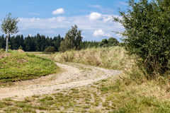 Rural path with trees next to meadows Royalty Free Stock Images