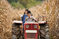 Rural people at corn harvesting. Rural family on a tractor driving through a ripe corn field for the harvest Royalty Free Stock Image