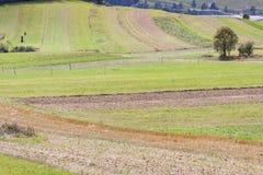 Rural - Poland. Stock Photography