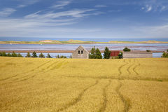 Rural Prince Edward Island Landscape Stock Images