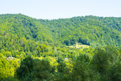 Rural property in the forest. Some villagers in Ukraine have rural property in the forest. Hills and trees, silence and nature Stock Images