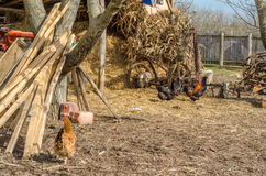 Rural property in Serbia Royalty Free Stock Photography