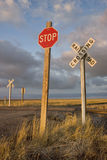 Rural railroad crossing witrh a stop sign Royalty Free Stock Photos