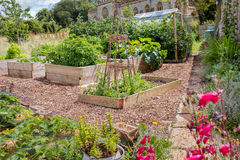 Rural Raised Bed Vegetable & Flower Garden Royalty Free Stock Images