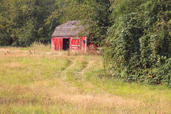 Rural Red Garden Shed Stock Photo