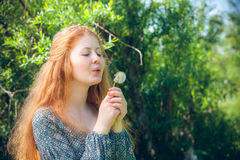 Rural red-haired girl with a dandelion Stock Images
